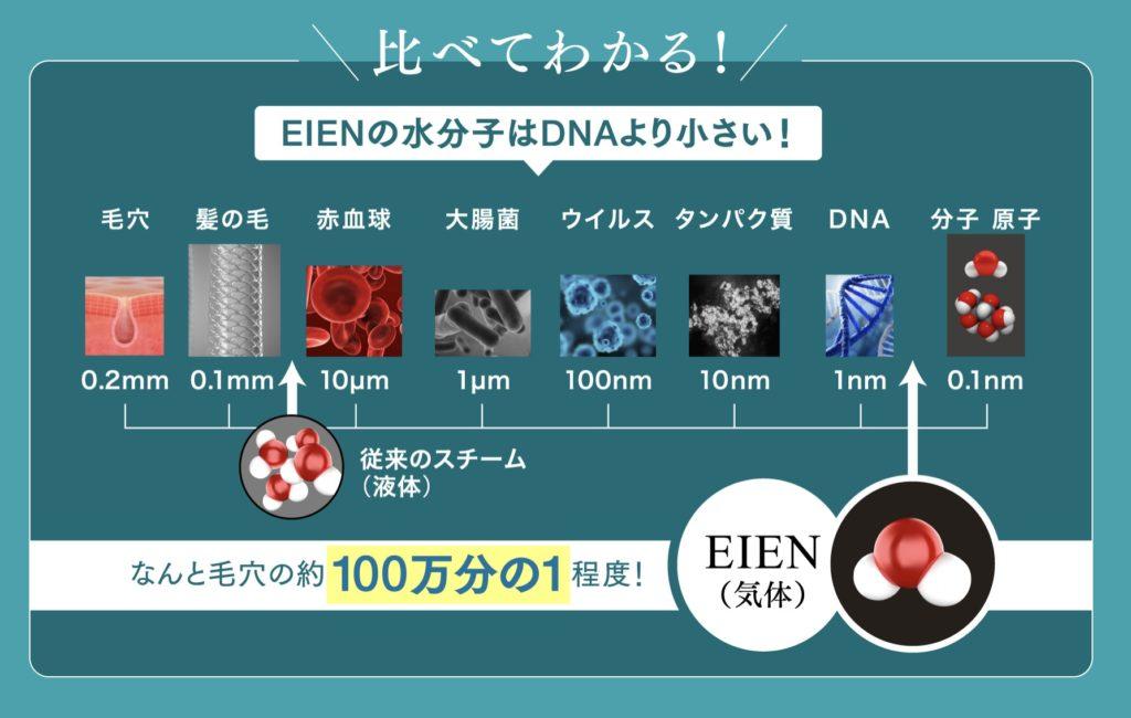 EINEの水分子はDNAより小さい